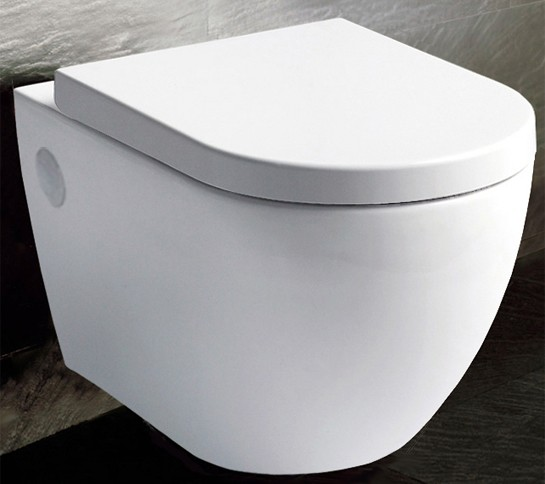 b ware 281133349496 bernstein luxus wand h nge wc toilette nano beschichtung ebay. Black Bedroom Furniture Sets. Home Design Ideas